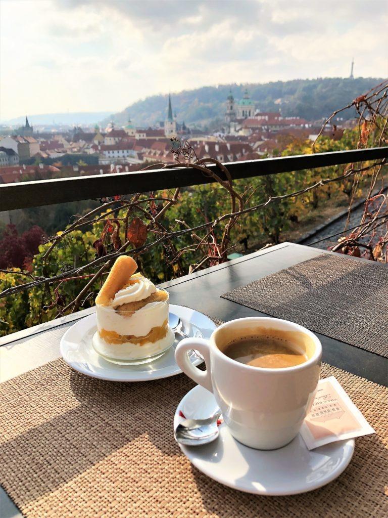 Viewpoint close to Prague Castle